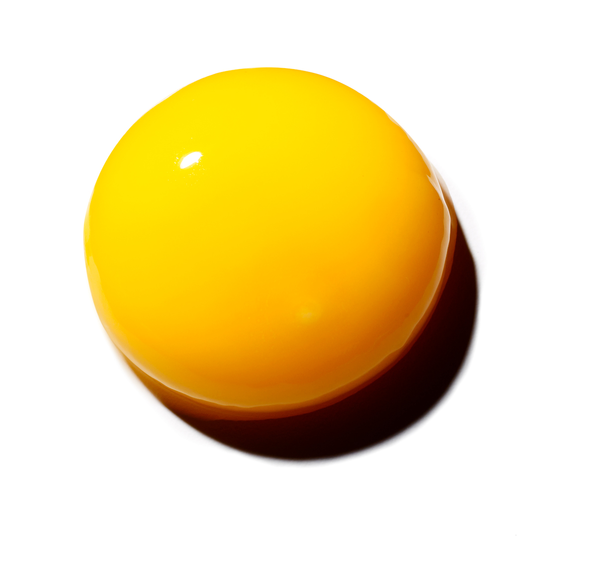 egg_yolk_v1_web